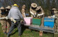 """Snáď už s príchodom, i keď """"bláznivého"""" apríla, prišlo aj príjemné jarné počasie. Mladí včelári z našej školy už netrpezlivo […]"""