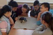 Prečo učiť, či vyučovať len prostredníctvom klasickej učebnice? Prečo nevyužiť na vyučovacích hodinách biológie ako názorné živé pomôcky zvieratá, o […]