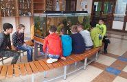Žiaci 5.A triedy v rámci predmetu biológia využili možnosť sledovania rýb v našom školskom 600 litrovom akváriu na praktickom cvičení. […]