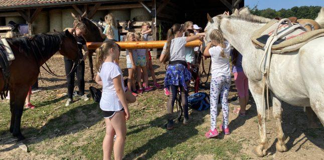 Letné prázdniny začali pre niektoré deti pobytom v letnom tábore, ktorý sa uskutočnil v dňoch 2. – 9. júla 2021 […]
